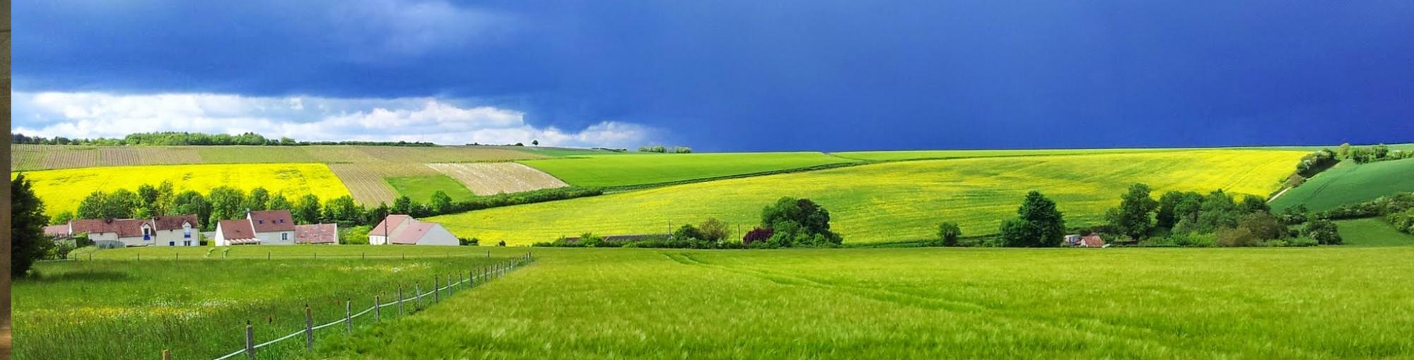 Greenopoli = Condivisione + Sostenibilità